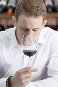 Young Man Smelling A Red Wineglass.