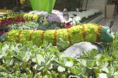 Floral sculptures in the Conservatory of Bellagio Hotel and Casino in Las Vegas