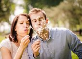 foto of dandelion  - Young happy couple blowing together dandelions - JPG