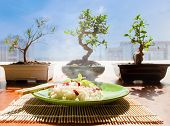 picture of juniper-tree  - Rice dish with red berries goji on background of bonsai tree - JPG