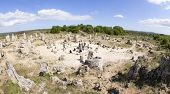 Panorama Of Pobiti Kamani (standing Stones, Stone Forest) Unique Natural Rock Phenomenon