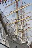 pic of ship  - The Russian sail training ship MIR is one of the biggest and fastest windjammer of the world - JPG