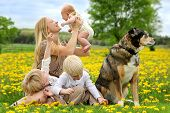 image of three sisters  - A happy young mother and her three children anewborn baby girl a toddler boy and big brother are playing in a country flower meadow with their pet dog on a spring day - JPG