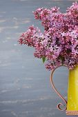pic of pitcher  - Fresh lilac flowers in the metal yellow pitcher against blue background - JPG