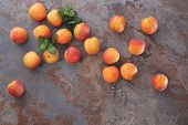 picture of apricot  - Still life of fresh apricots on a rustic stone surface - JPG