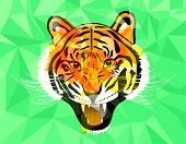 pic of tigers-eye  - Tiger anger geometric style - JPG