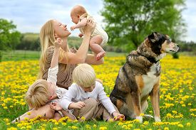 stock photo of three sisters  - A happy young mother and her three children anewborn baby girl a toddler boy and big brother are playing in a country flower meadow with their pet dog on a spring day - JPG