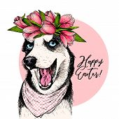 Portrait Of Siberian Husky Dog Wearing Tulip Crown And Bandana. Welcome Spring. Hand Drawn Colored V poster
