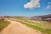Sunny Vanishing Footpath Among Sunny Growth On Avakas Gorge Slopes. Akamas Peninsula, Cyprus. poster