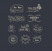 Vector Set Of Handdrawn Floral Logos. Hand Drawn Spring Collection With Typographic Design Elements. poster