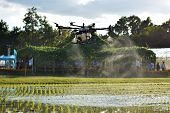 Carrying Agriculture Drone, Photo Image Of Agriculture Drone Carry A Tank Of Liquid Fertilizer Flyin poster