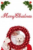 Santa Claus smiles as he poses for a photo with his pure white Bichon Frise Puppy. Isolated on white poster