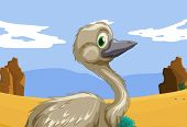 Aussie emu in the outback