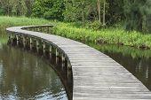 Wooden Bridge Across In The Lake. Idyllic Landscape poster