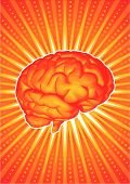 picture of frontal lobe  - Vector illustration of a brain in orange - JPG