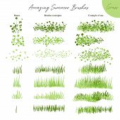 Set Of Summer Vector Grass Ecology Brushes - Silhouettes Of Summer Grass, Flowers, Different Earth G poster