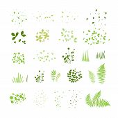 Set Of Silhouettes Of Summer Grass, Leaves, Foliage Of Trees, Different Greenery Types Isolated On W poster
