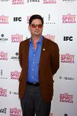 LOS ANGELES - FEB 23:  Roman Coppola attends the 2013 Film Independent Spirit Awards at the Tent on the Beach on February 23, 2013 in Santa Monica, CA