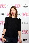 LOS ANGELES - FEB 23:  Sofia Coppola attends the 2013 Film Independent Spirit Awards at the Tent on the Beach on February 23, 2013 in Santa Monica, CA