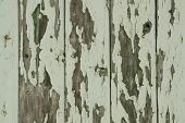 green peeling wooden wall