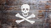 Bandeira da pirataria