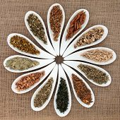 Herb selection used in natural health remedies and making magical potions in white porcelain dishes over hessian background.
