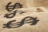 Burlap sacks with dollar sign
