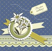 stock photo of edelweiss  - Happy birthday greeting card with edelweiss flowers - JPG
