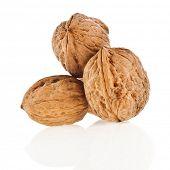 three walnut isolated on white background