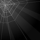 stock photo of spiderwebs  - Dark vector background with spider web in the corner - JPG