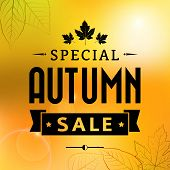 Autumn Special Sale Vintage Vector Typography Poster
