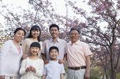 Portrait of a smiling multi-generational family amongst the cherry trees