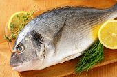 freshly caught sea bream on a wooden board