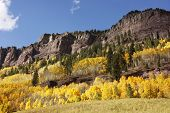 Scenic Near Telluride, Uncompahgre National Forest, Colorado