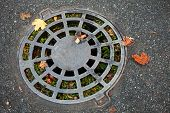 Round Sewer Manhole On Dark Asphalt With Autumnal Leaves And Green Grass Inside