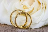 Golden Wedding Rings With White Rose