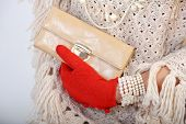 Elegant woman hand with beige wallet and red gloves