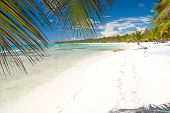 Caribbean Sea With White Sand On Island Saona