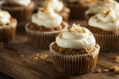 pic of cupcakes  - Homemade Carrot Cupcakes with Cream Cheese Frosting for Easter - JPG