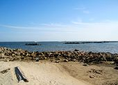 foto of dauphin  - This shot is of the East End of Dauphin Island - JPG
