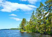 Lake Ruotsalainen Summer View (finland).