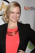 LOS ANGELES - APR 2:  Martha Madison at the 2014 Indie Series Awards at El Portal Theater on April 2