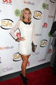 LOS ANGELES - APR 2:  Tiffany Coyne at the 2014 Indie Series Awards at El Portal Theater on April 2,