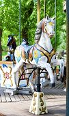 pic of carousel horse  - Brightly painted old carousel horse in summer park - JPG
