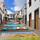Firgas, Paseo De Canarias
