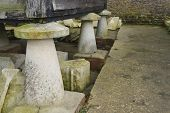 Uk English Staddle Stones Supporting Wooden Barn.