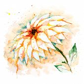 Watercolor background with flower