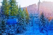 View of cabins in fir forest, Bansko, Bulgaria