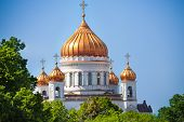 Cathedral of Christ the Savior golden domes