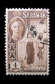 Vintage Sarawak Postage Stamp